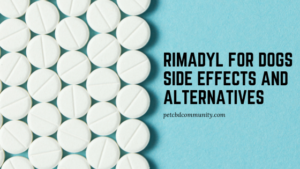 Rimadyl for dogs side effects alternatives