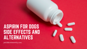 side effects aspirin for dogs
