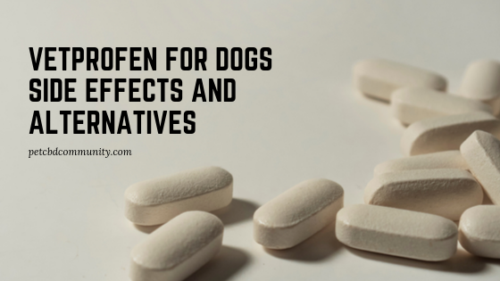 vetprofen for dogs side effects and alternatives
