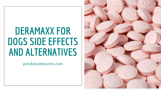 side effects of deramaxx for dogs alternatives