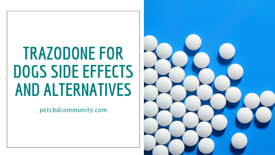 side effects of trazodone for dogs alternatives