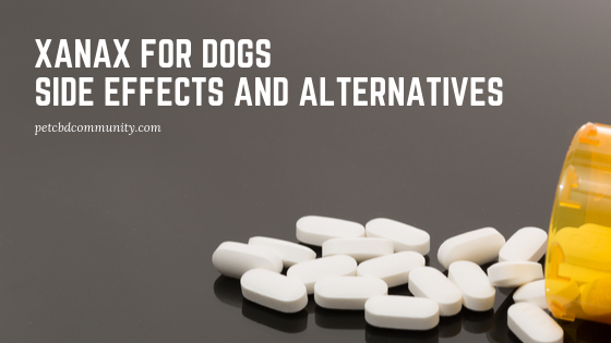 side effects of xanax for dogs and alternatives