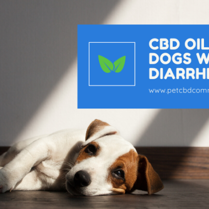 cbd-oil-for-dogs-diarrhea